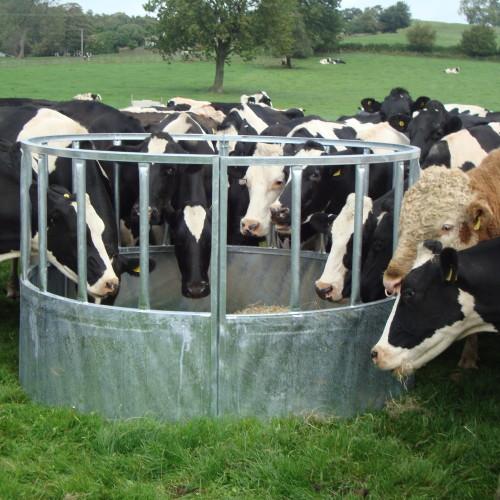 bateman HD Cattle Ring Feeder