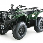 grizzly-450