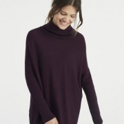 joules-earth-plum